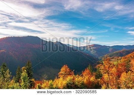 Great View Of Romania Mountain Landscape. Forested Slopes In Evening Light. Deciduous Trees In Fall