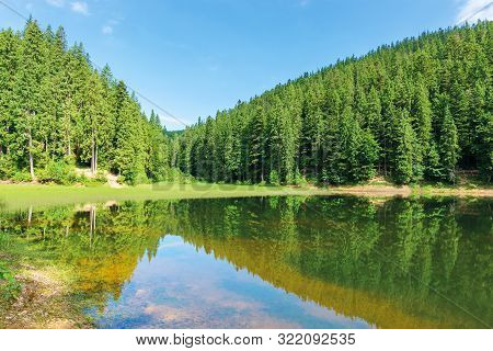Beautiful Summer Landscape In Mountains. Lake Among The Spruce Forest. Wonderful Sunny Weather. Scen