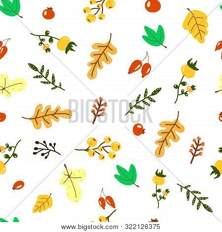 Vector Hand Drawn Pattern With Autumn Elements Contours Foliage, Berries And Acorns On The Beige Bac