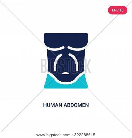 human abdomen icon in two color design style.