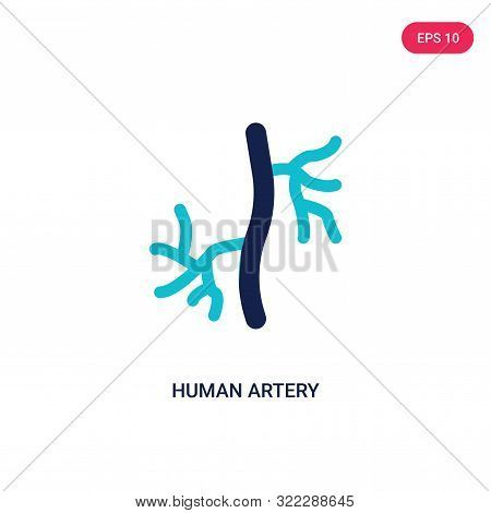 human artery icon in two color design style.