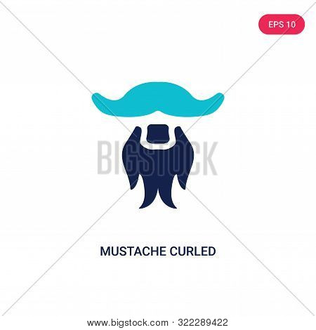 mustache curled tip variant icon in two color design style.