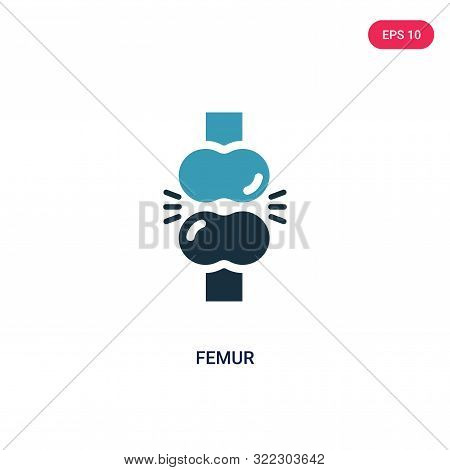 femur icon in two color design style.