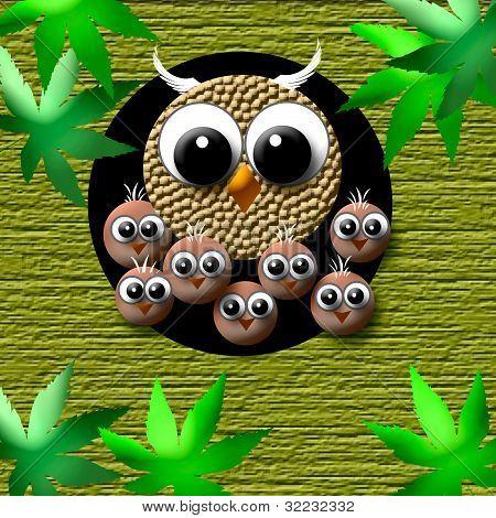 cozy owl family