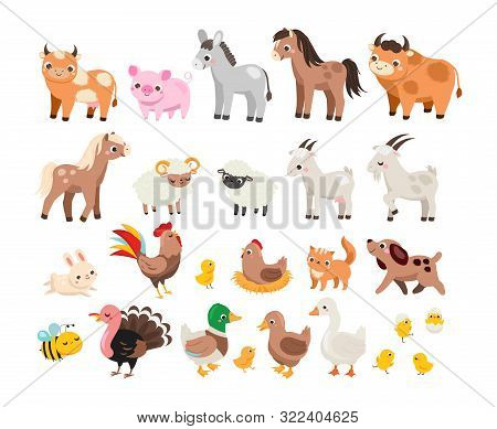 Cute Farm. Big Set Of Cartoon Farm Animals And Pets For Kids And Children. Cow, Horse, Pig And Many