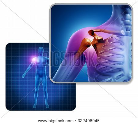 Human Shoulder Joint Pain Concept As Skeleton And Muscle Anatomy Of The Body With Sore Inflammation