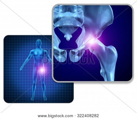 Human Hip Joint Pain Concept As Skeleton And Muscle Anatomy Of The Body With Sore Joints As A Painfu