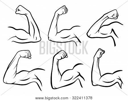 Powerful Hand Muscle. Strong Arm Muscles, Hard Biceps And Hands Strength Outline. Muscular Logo, Hea