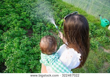 Mom And Son Water Fruits, Berries, Vegetables, Eco Food. Homemade Crops. Without Additives. Healthy