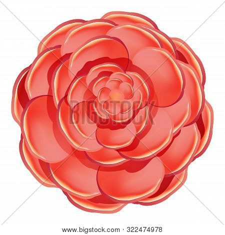 Red Camellia Icon. Cartoon Of Red Camellia Vector Icon For Web Design Isolated On White Background