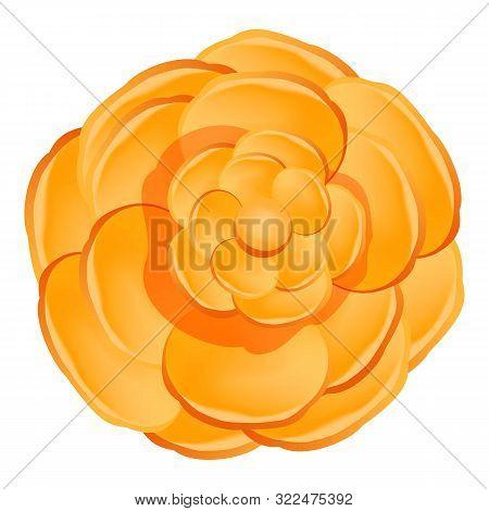 Orange Camellia Flower Icon. Cartoon Of Orange Camellia Flower Vector Icon For Web Design Isolated O