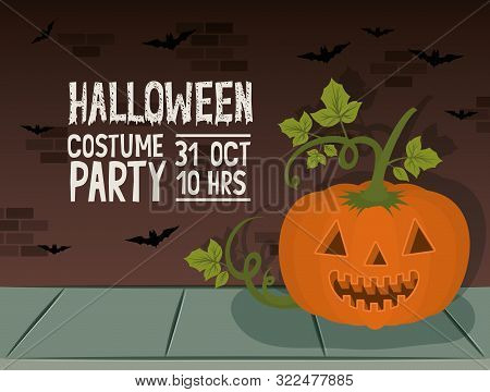 Halloween Celebration Card With Pumpkin Character And Bats Vector Illustration Design