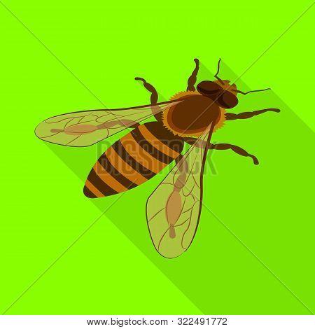 Vector Design Of Bumblebee And Wild Symbol. Collection Of Bumblebee And Biology Vector Icon For Stoc