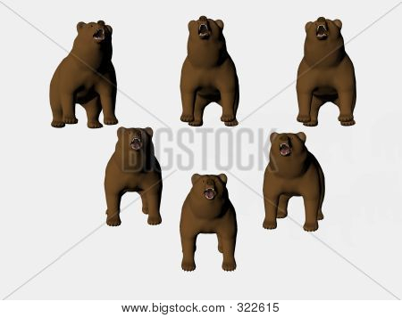 isolated bears on point poster