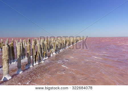 Landscape View Of The Textured Fragments Of Wooden Dam Formwork On The Delightful Pink Lake Sasyk-si