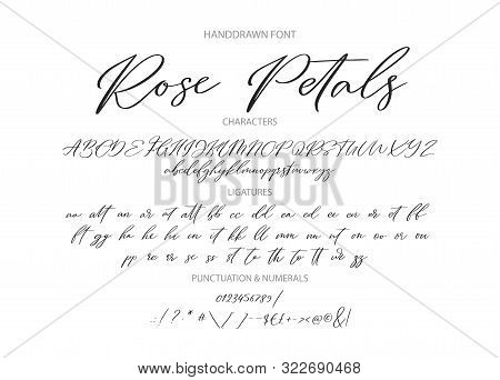 Hand Drawn Calligraphic Vintage Vector Font. Distress Grunge Texture. Modern Script Calligraphy Type