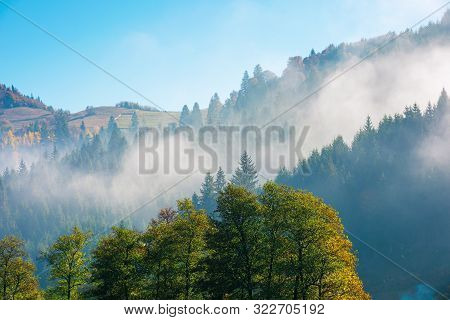 Wonderful Autumn Weather In Mountains. Distant Forested Hills In Hazy Mist. Sunny Morning In Carpath