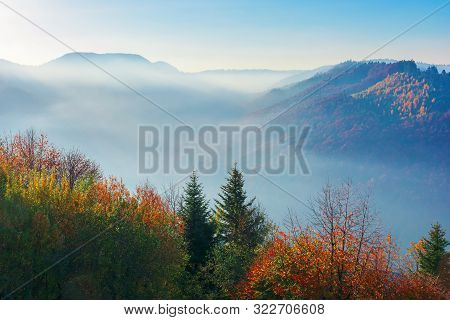 Beautiful Misty Autumn Morning In Mountains.  Forested Hills In Colorful Foliage. Fog Rising Above T