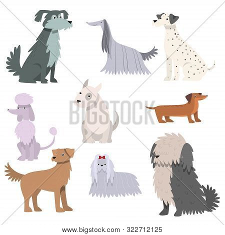 Dogs Set. Raster Illustration In Flat Cartoon Style