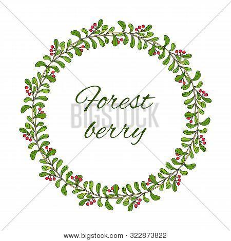 Kinnikinnick Or Uva-ursi Forest Wreath With Berries. Hand Drawn Botanical Vector Illustration
