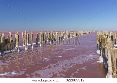 Beautiful Pink Lake Sasyk Sivash In The Western Part Of The Crimean Peninsula Near Yevpatoria On A S