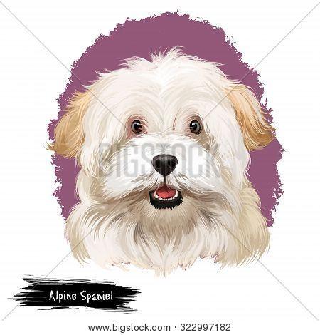Alpine Spaniel Dog Digital Art Illustration Isolated On White Background. Spaniel Large Dog Notable