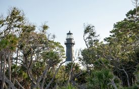 Hunting Island State Park Lighthouse In South Carolina.