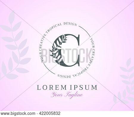 Feminine Letter C Logo With Nature Leaves Texture Design Logo Icon. Creative Beauty Alphabetical Bea