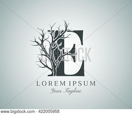 Letter E With Dead Tree Design Logo Icon. Creative Alphabetical Creepy Dry Tree Brach Nature Logo Te