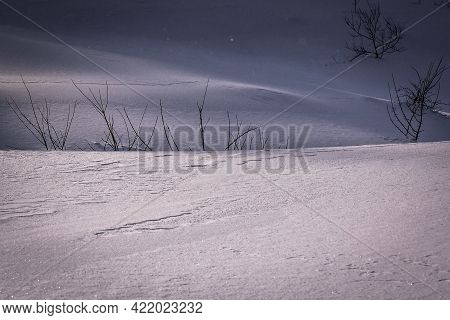 Beautiful Evening Winter Landscape With Untouched Snow