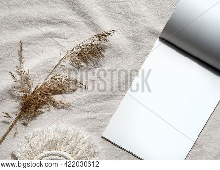 Copy Space N Block Note And Pampas Grass.. Simple Minimal Flat Lay On Ivory Textile With Dry Earth C