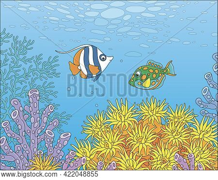 Exotic Small Fishes Swimming In Blue Water Of A Colorful Coral Reef In A Tropical Southern Sea, Vect