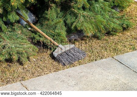 An Old Synthetic Broom Lies Near A Spruce Tree On The Dry Grass Next To The Snow