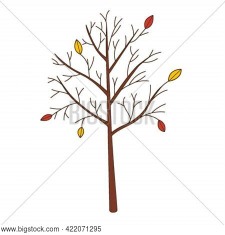 A Bare Tree With Fallen Leaves. Botanical, Plant Design Element With Outline. Doodle, Hand-drawn. Fl