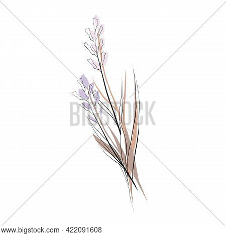 Delicate Illustration Of A Sketch Of A Bouquet Of Wild Flowers. Vector Natural Contour Drawing. Wild