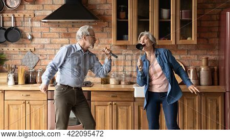 Funny Mature Spouses Having Fun Singing Together In Kitchen