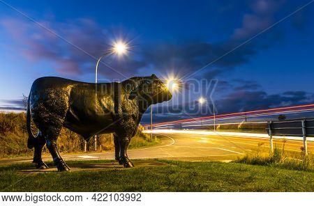 Bulls Is A Farimng Town In New Zealand That Has These Big Black Bulls Though The Town. You Will See
