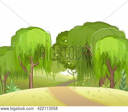 Forest Road. Summer Landscape. Dense Foliage. View Of Hills And Green Trees. Nature Illustration. Ca