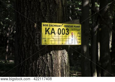 Havirov, Czech Republic - September 4, 2020: The Yellow Signboard Of Rescue Point On A Tree In A For