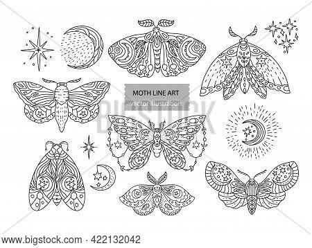 Boho Butterfly Line Vector Set. Beautiful Moth Vector Magic Ornament, Celestial Element Illustration