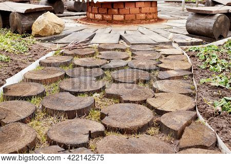 Pathway Of Wooden Round Logs On Grass Bed In Garden. Wooden Path In Circles Close Up. Path Of Tree S
