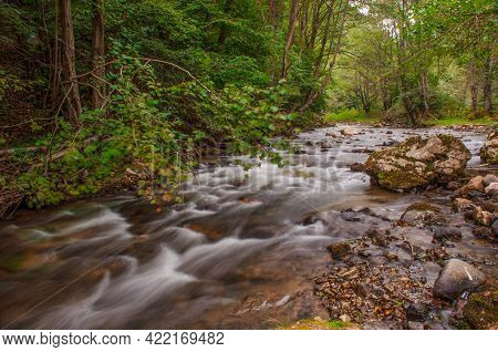 Mountain River With Fast Waters Passing Through The Forest. Windy Day, Long Exposure.