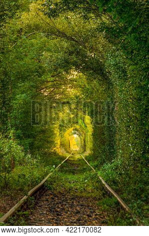The Tunnel Of Love, A Green And Natural Tunnel Formed By Trees Along A Railway In Obreja, Caras Seve