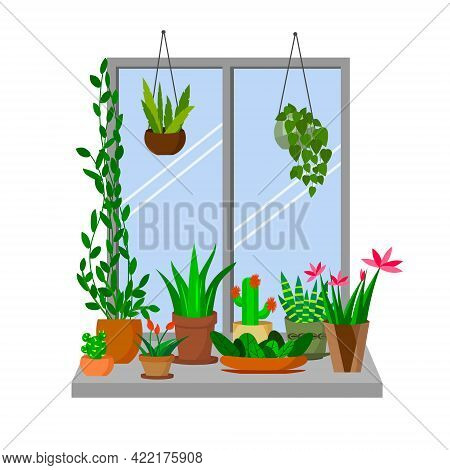 Flowers In Pots On The Windowsill. Interior Illustration With House Plants On The Window. Vector Ill