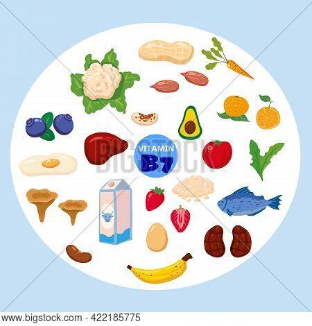 Set Of Vitamin B7 Origin Natural Sources. Healthy Diary Food Rich Biotin, Meat, Fish, Vegetable, Fru