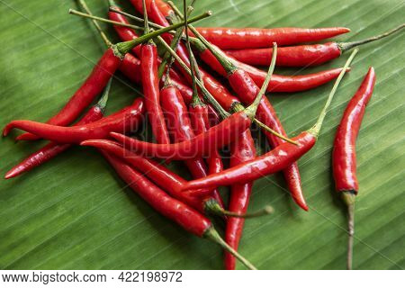 Hot And Spicy Chili Pepper On Banana Leaf Background, Red Chilli From Thailand