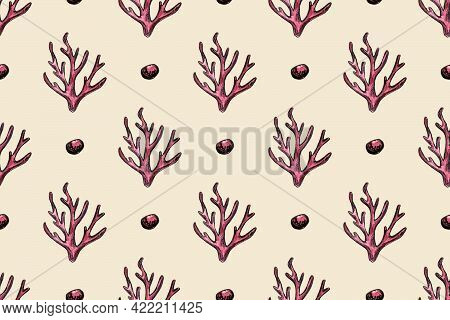 Hand Drawn Watercolor Seamless Pattern With Corals