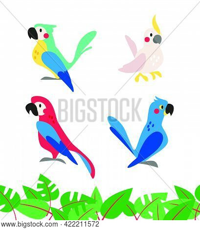 Collection Of Cute Exotic Macaw And Ara Parrots And Tropical Leaves Isolated On White Background. Ve