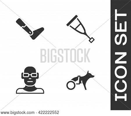 Set Dog In Wheelchair, Prosthesis Leg, Poor Eyesight And Crutch Crutches Icon. Vector