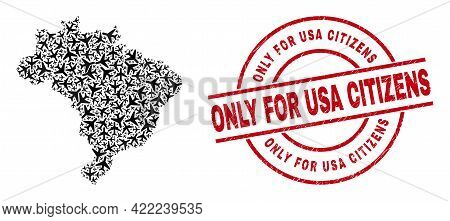 Only For Usa Citizens Textured Seal Stamp, And Brazil Map Collage Of Air Force Elements. Collage Bra